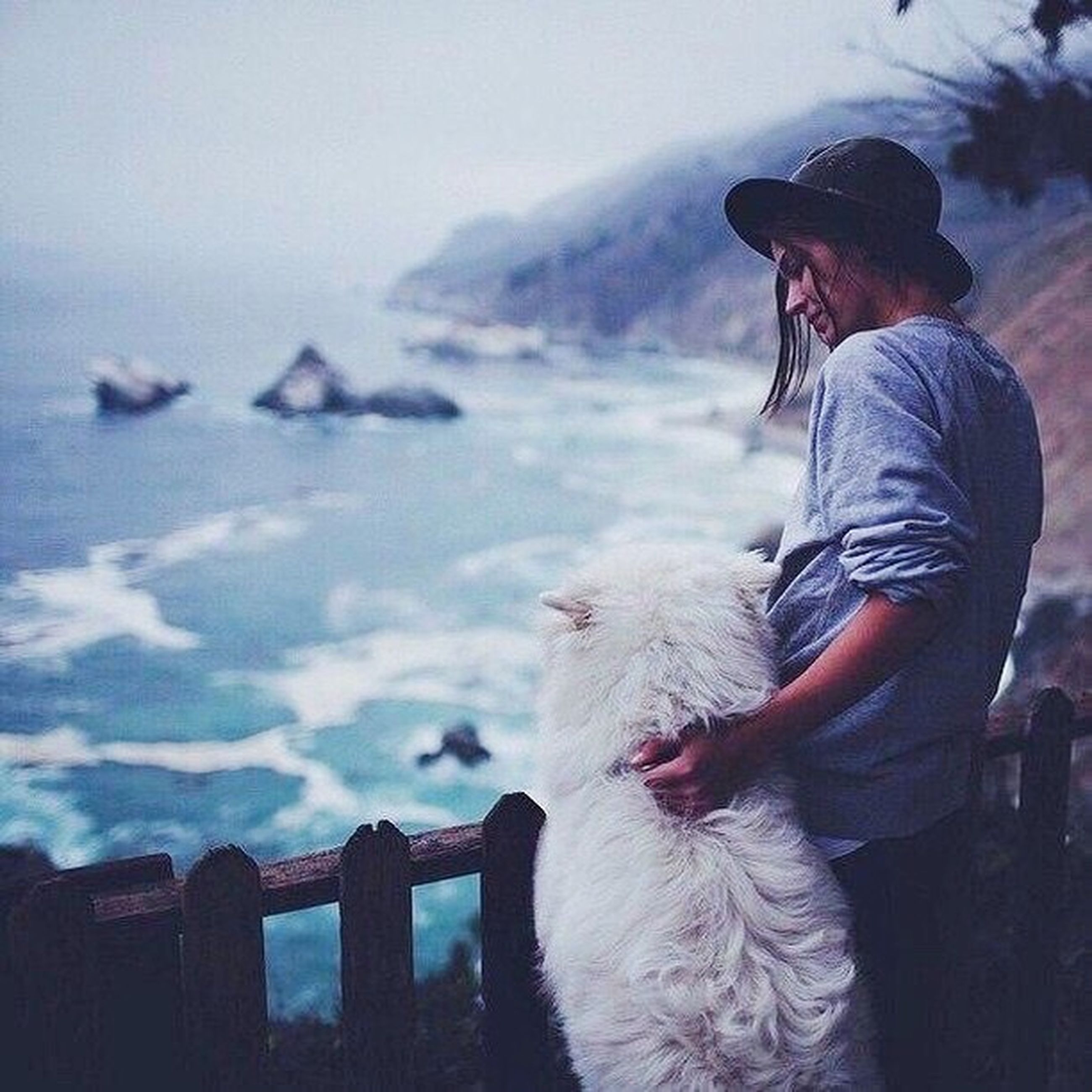 one animal, dog, one person, animal themes, pets, real people, mature adult, leisure activity, outdoors, lifestyles, sea, day, domestic animals, sky, beach, water, nature, mammal, adult, people, one man only, adults only, young adult, only men
