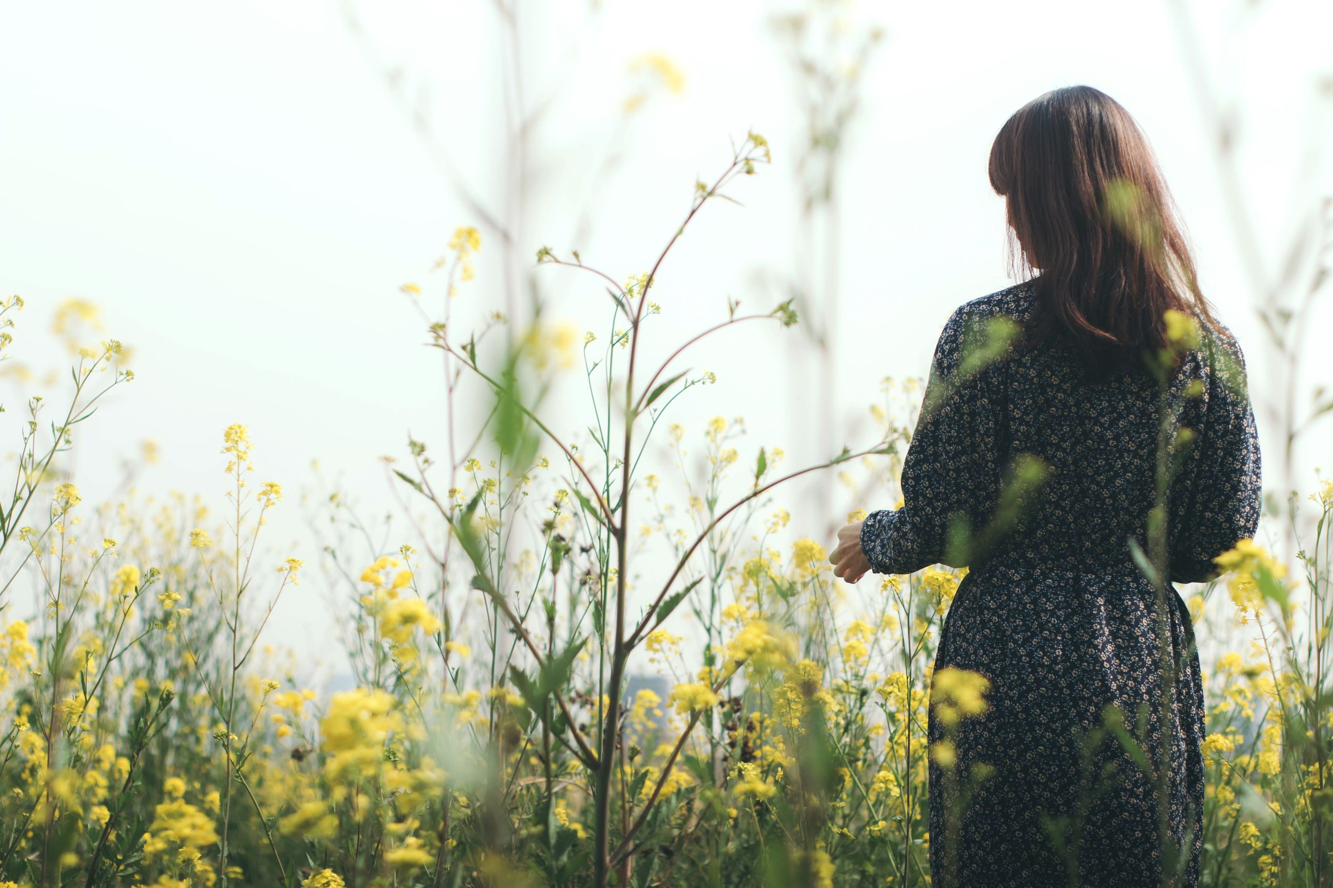 one person, one woman only, three quarter length, only women, flower, knitted, long hair, adults only, sunlight, rear view, beauty, adult, field, young adult, nature, people, women, outdoors, beautiful woman, day, sky, one young woman only