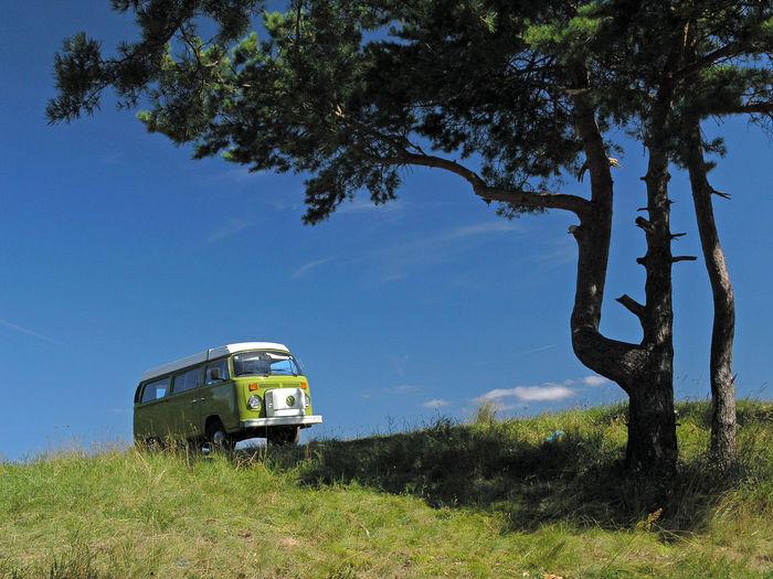 Adventure Bus Camper Campervan Day Green Green Car Land Vehicle Mazuren Mazuria Mazuria Lake District Mazury Mode Of Transport Offroad Poland T2 Transportation Tree Volkswagen Volkswagen T2 Volkswagen Westfalia Volkswagenbus