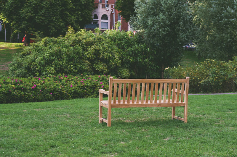 Bench Building Exterior Chair Day Grass Green Color Growth Nature No People Outdoors Park Plant Tree