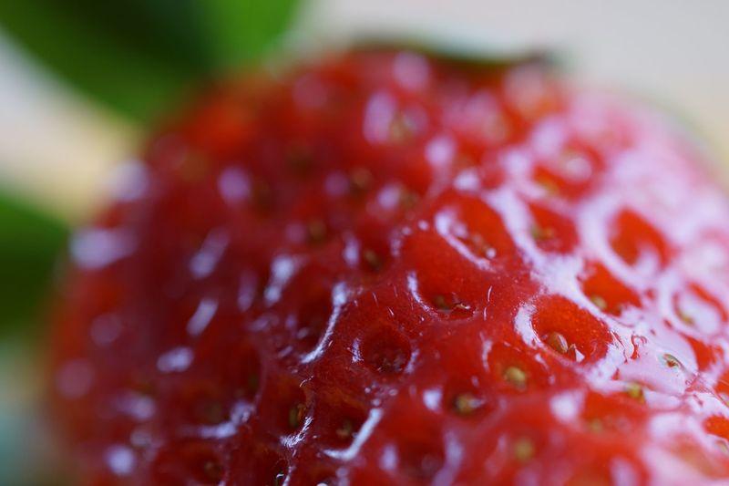 Erdbeere Berry