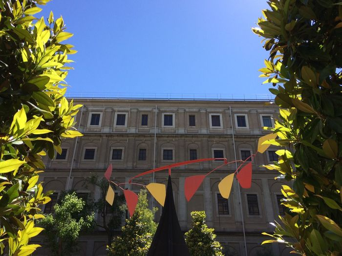 Live For The Story Building Exterior Architecture Yellow Outdoors Art Sculpture Calder Museum Reina Sofía Museum Madrid Reina Sofía  Madrid Built Structure Growth Day Plant Leaf Tree Low Angle View Clear Sky No People Blue Nature Sky