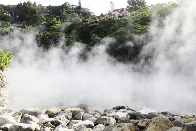 Xinbeitou Hotspring Beauty In Nature Day Growth Hot Spring Landscape Nature No People Outdoors Scenics Taipei Taiwan Tree Water Waterfall Wen Quan Xinbei,taiwan Xinbeitou Xinbeitouhotspring 新北投
