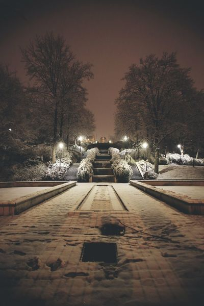 Jardin de Belleville sous la neige Winter Snow Night Illuminated Cold Temperature Tree Weather Nature Outdoors Street Light No People Sky Beauty In Nature