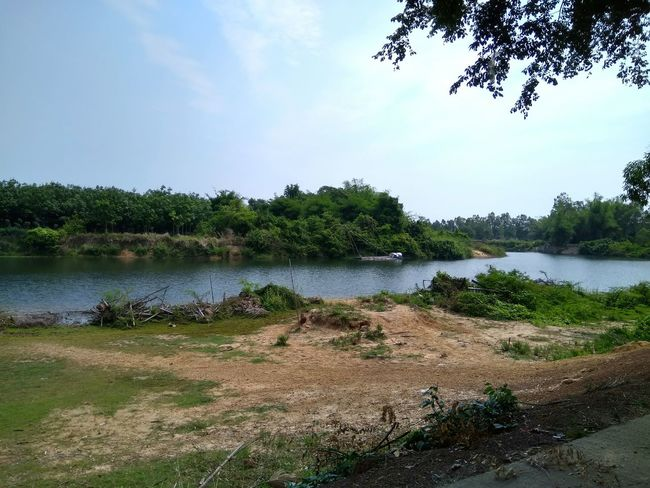 Water Tree Lake Nature Landscape Beach Beauty In Nature Outdoors Tranquility Scenics Day Sky No People Nature Mountain Travel Photography Thai Thailand River