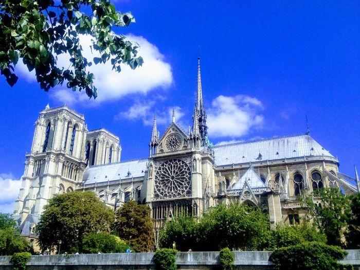 Notre Dame de Paris Architecture Tree Sky Low Angle View Built Structure No People Blue