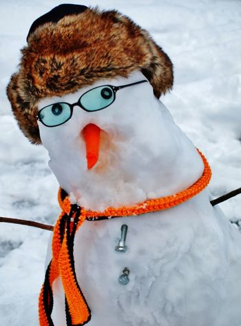 Silly Winter Things Snow ❄ Outdoors Focus On Foreground Beauty In Nature Winter Winterfun Snowman Face Snowman Cold Temperature Snow Day Fragility Freshness No People Simple Pleasures In Life Family Fun Shades Of Winter