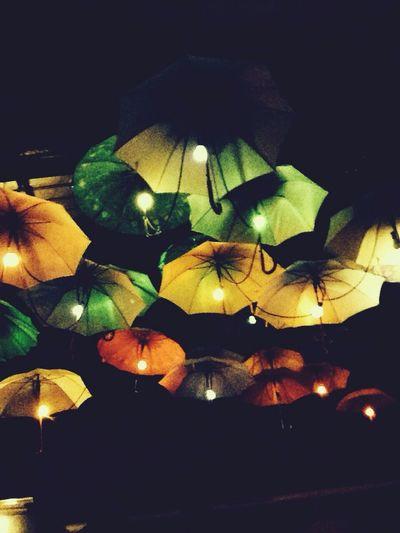 Rainy lights Light Up Your Life
