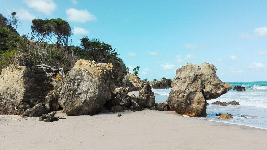 Natural landscape of the coast of brazil