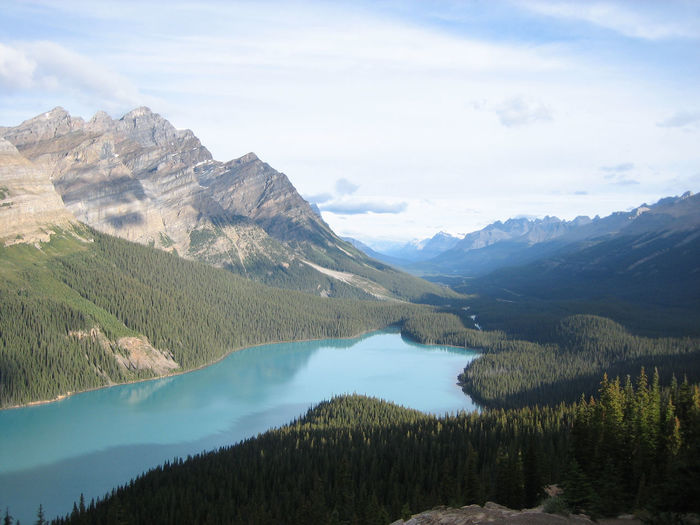 Scenic view of peyto lake and mountains