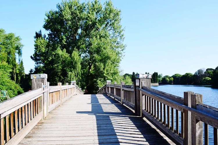 Nature Woden Bridge Hand Rail Beauty In Nature Sunshine Outdoors Focus On Foreground Scenery Shots Beauty Of Nature Have A Nice Day♥ Tree Clear Sky Blue Summer Water Sunlight Sunny Sky Horizon Over Water Tranquil Scene Tranquility Scenics Footbridge Idyllic