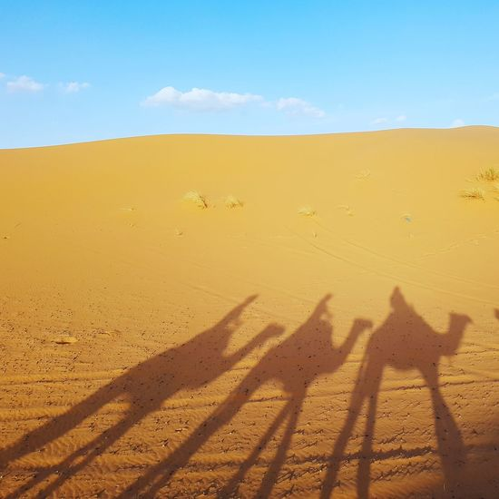 Shadow Of People On Sand Dune In Desert Against Sky