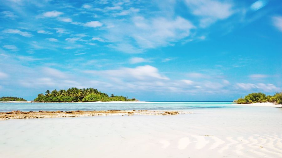 Tropical bliss Sea Beach Sky Sand Nature Tranquility Beauty In Nature Water Tranquil Scene Scenics Tree No People Cloud - Sky Blue Day Outdoors Horizon Over Water Breathing Space