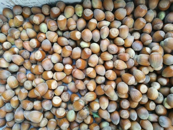 High angle view of chestnuts for sale at market