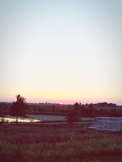 Tree Sunset Clear Sky Sky Landscape Farmland