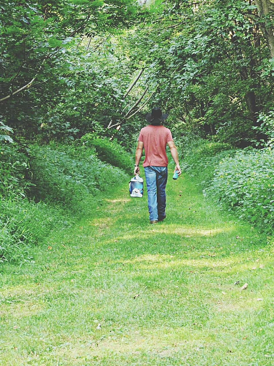Rear View Of Man Carrying Bag On Footpath Amidst Trees In Forest