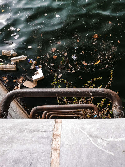 let's be trash together Scheldt Trash Ecology Environment Dirty Water Dirty Water  Stairs Channel Water Swimming Pool City Fountain Hand Rail Marine Steps Atmospheric Relaxing Moments Flowing Habitat Relaxed Moments Scenery