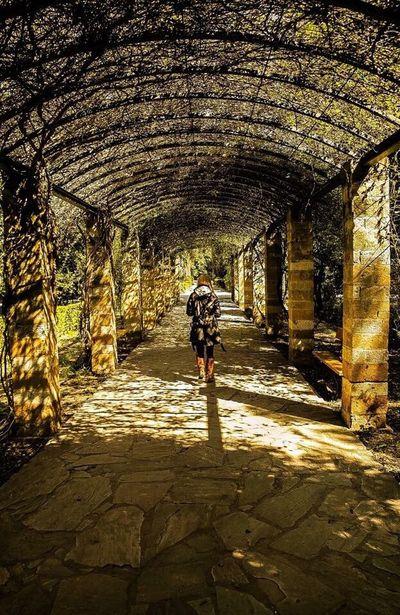 Athens, April 2015 Athens Greece Shadows WalkingAway Blonde Vines 43 Golden Moments Natural Light Portrait