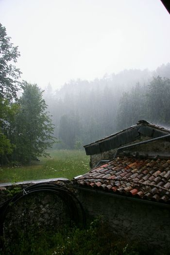 Built Structure Roof House Fog No People Building Exterior Day Nature Tree Raining Outside Raining Wall