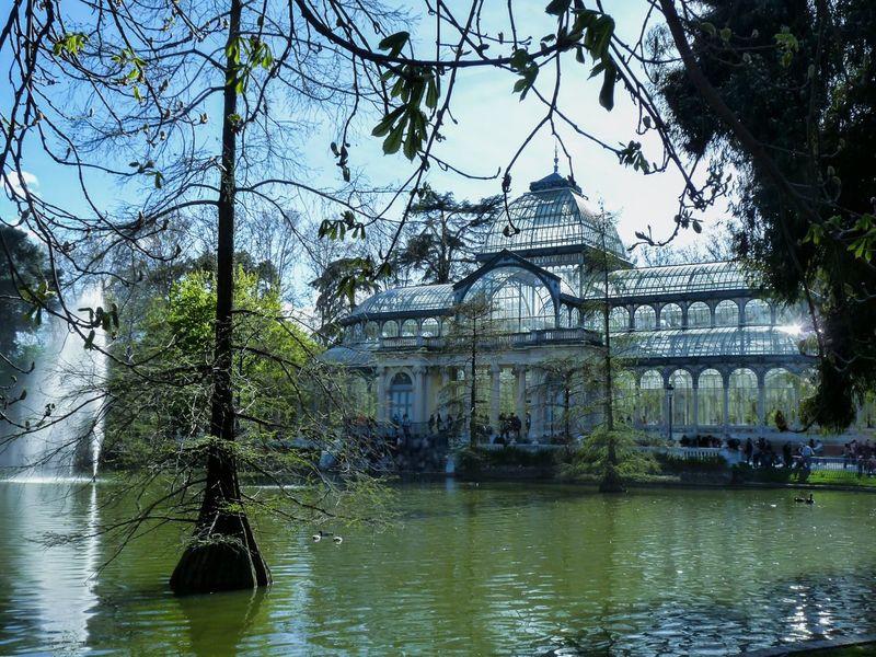 Magic place Glass Palace Lake Retiro Park Water Tree Glass