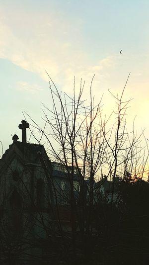 santa cruz cafeden ermeni kilisesinin görünümü