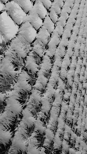 Snow Snow Abstract No People Minimalism Minimalobsession Monochrome Simple Photography Geometric Abstraction Built Structure Mobilephotography Eyeem Hungary Mobile Photography Geometry Simmetry Black And White Blackandwhite Simmetrical Naturelovers Winter Black & White Contrasts Contrast Snow ❄ Cold Cold Temperature