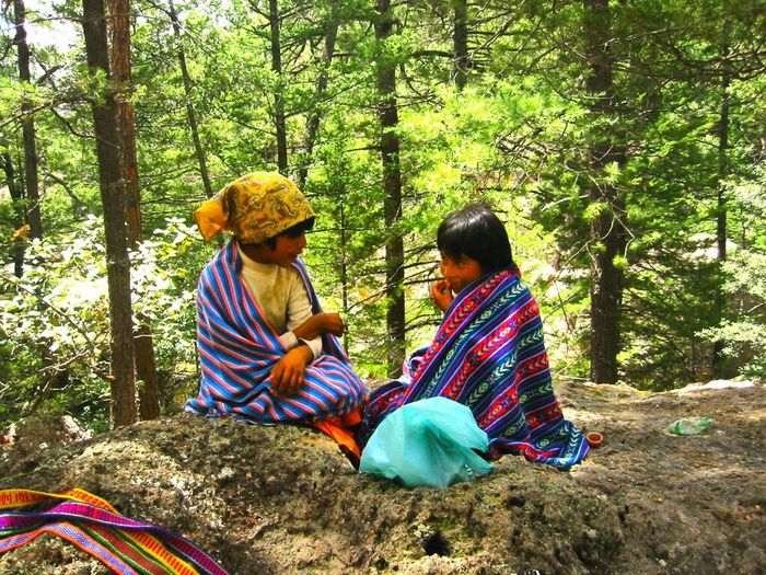 Sierra Tarahumara Forest Better Together People Native