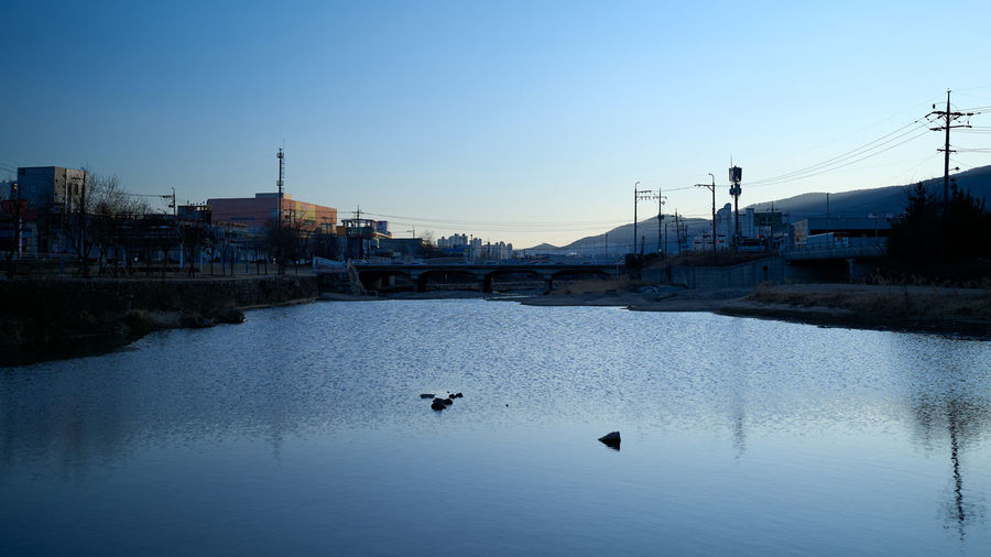 View of birds in river against clear sky