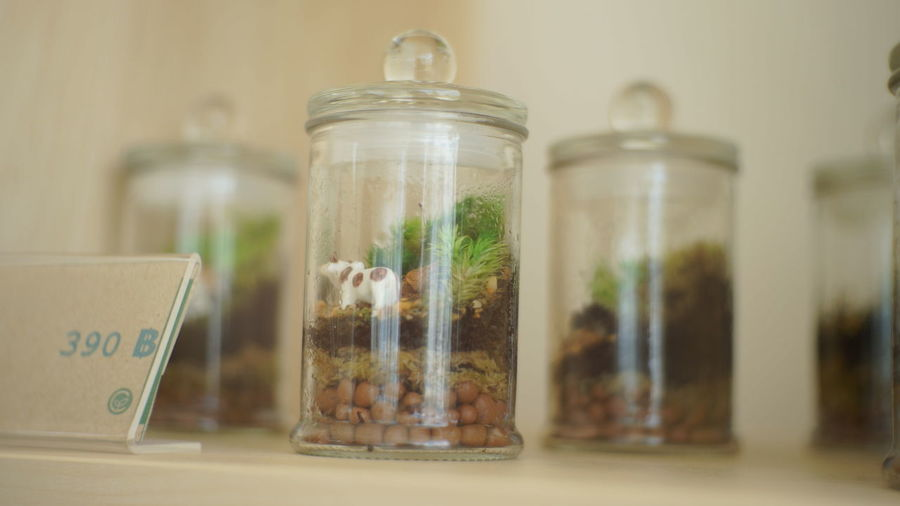 Decoration in glass jar for sale at store