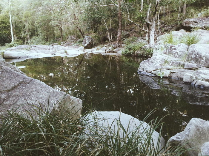 Nature Reflections Get Outdoors Escaping Vscocam VSCO Water Reflections Blessed  Family Time Exploring Trees Nature_collection Things I Like Time With Friends Showcase: April 2016 The Great Outdoors With Adobe The Great Outdoors - 2016 EyeEm Awards