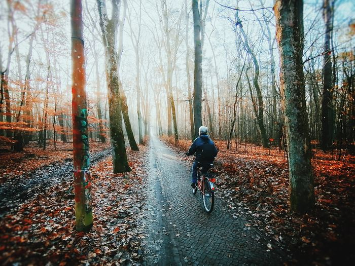 Man riding motorcycle in forest during autumn