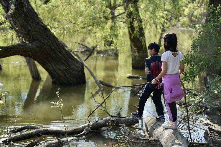 Full length of women on lake amidst trees