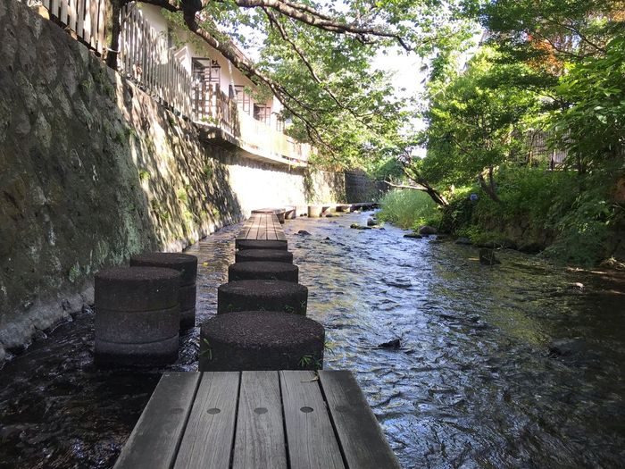 Narrow footbridge over river amidst trees and buildings
