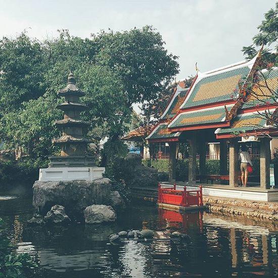 A tranquil area around the turtle pool at Wat Prayoon. Bangkok Thailand Travel Travelshots Wanderlust Turtles Longevity Reflection Explorebkk Everydaythailand VSCO Vscocam Vscoeveryday Vscothailand Vscobangkok Vscothai Vscophoto Vscogood Vscotravel
