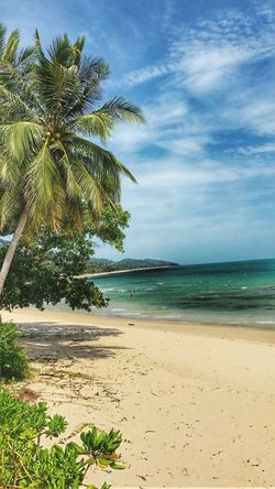 Sea Beach Sand Palm Tree Scenics Nature Sky Tranquility Tranquil Scene Horizon Over Water Beauty In Nature Tree Water Idyllic No People Outdoors Day Landscape 🇹🇭🇹🇭