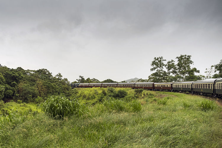 Robb Reserve Bend Kuranda Scenic Railway Connection Curves And Lines Day Grass Green Color Growth Land Nature No People Outdoors Public Transportation Rail Transportation Railroad Scenic Railway Sky Track Train Train - Vehicle Train Travel Transportation Tree