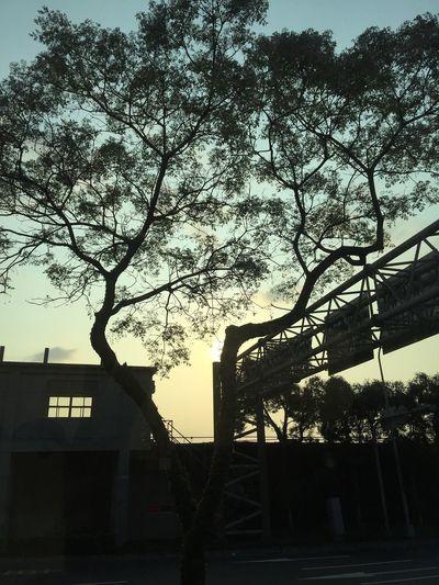 青山依舊在,幾度夕陽紅🌇 剪影 夕陽 Sunset