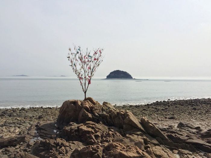 A lonely island Korea Branch Ribbon On Branch Ribbons Colorful Ribbons Sea Sea Horizon One Island Rocks Rocks And Water Water Sea Beach Rock - Object Sky Horizon Over Water It's About The Journey