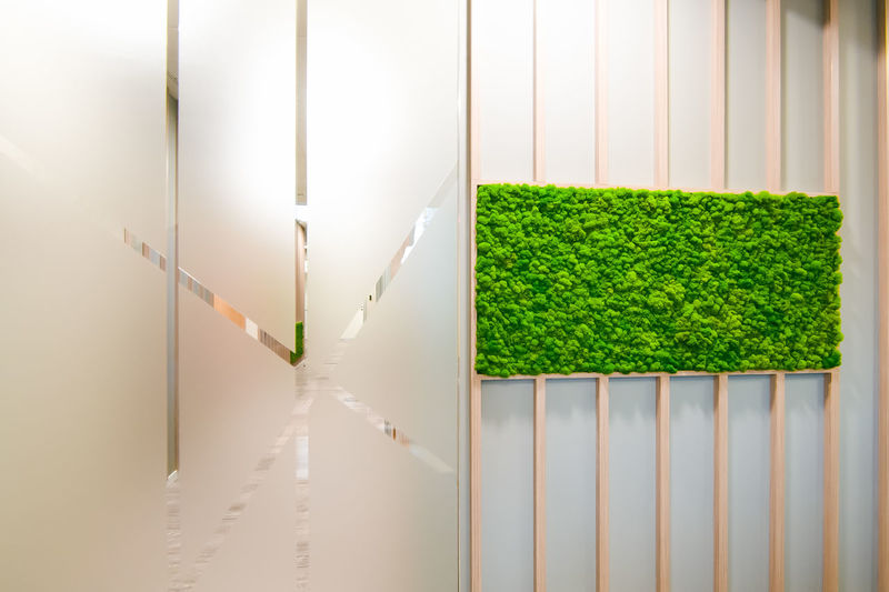 Agriculture Architecture Biochemistry Biotechnology Copy Space Day Genetic Modification Grass Green Color Growth Healthcare And Medicine In A Row Indoors  Nature No People Plant Research Responsibility Safety Scientific Experiment Wall - Building Feature