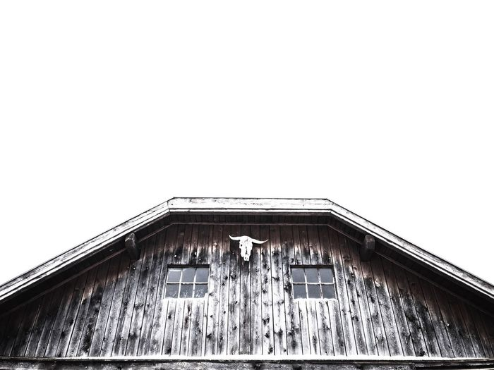 wooden barn with skull in winter Texture Textures And Surfaces Copy Space Background Low Angle View Windows Bull Rooftop Wintertime Old Buildings Old-fashioned Wood - Material Winter Skull Cottage Wooden House Wooden Texture Architecture Built Structure Building Exterior Low Angle View House No People Day Outdoors Corrugated Iron Roof Barn Sky Animal Themes