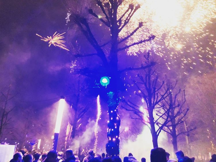fireworks. hello 2018. Tree Lights Light Violet Violett Blue Urban City Party Newyearseve NewYear Fireworks Firework Night Illuminated Tree Celebration Arts Culture And Entertainment Large Group Of People Event Outdoors Real People Crowd Sky People