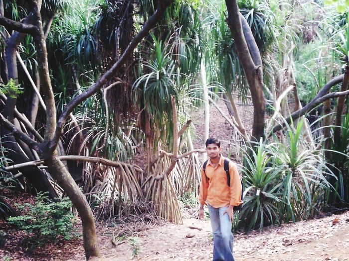 Vamsi Prudhvi Raj Tree One Person Real People Lifestyles Palm Tree Walking Day Outdoors Standing Vacations Nature