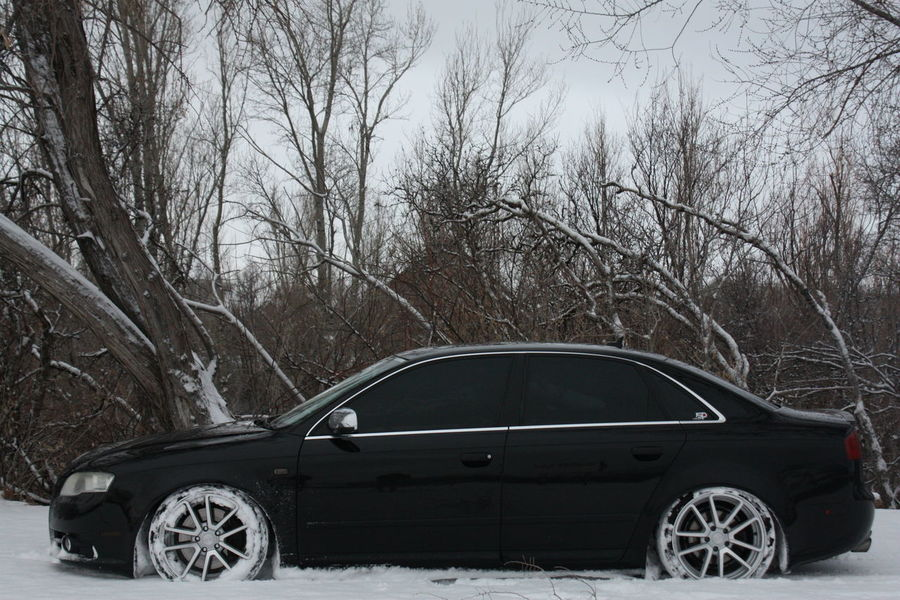 Audi Audia4 Audi A4 Audib7 Audilove Lowdaily Quattro Low_restriction German Engineering Rotiform Snow Nature