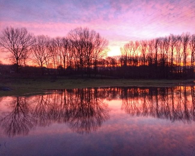Reflection of silhouette trees in lake against sky during sunset