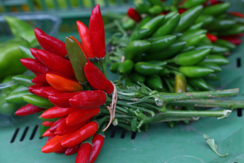 Red and green jalapeno hot chili peppers bunches on retail farmers market stall Agriculture Bunches Chili  Chili Pepper Close-up Crop  Farmers Market Farming Food For Sale Freshness Harvest Hot Jalapeno Jalapeños Market Market Stall Pepper Red Red Hot Chili Peppers Retail  Retail Display Season  Vegetables Beautifully Organized