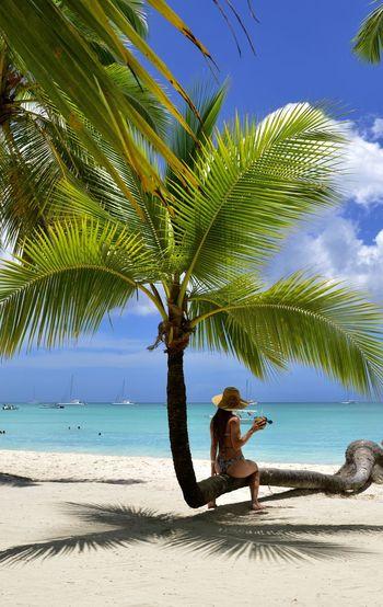 Sea Tree Beach