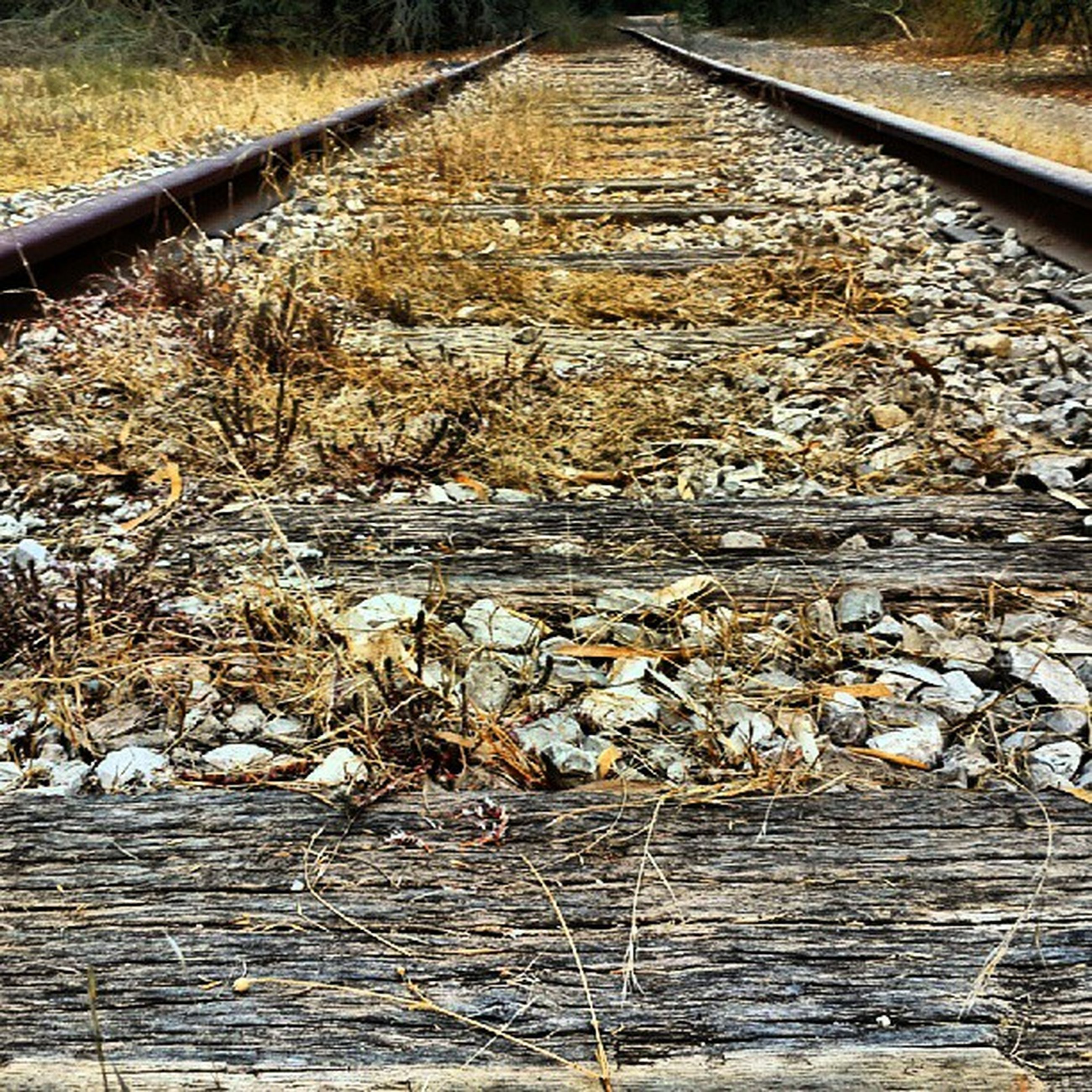 the way forward, diminishing perspective, vanishing point, transportation, railroad track, tranquility, long, connection, water, wood - material, nature, high angle view, tranquil scene, day, surface level, wood, stone - object, no people, rail transportation, outdoors