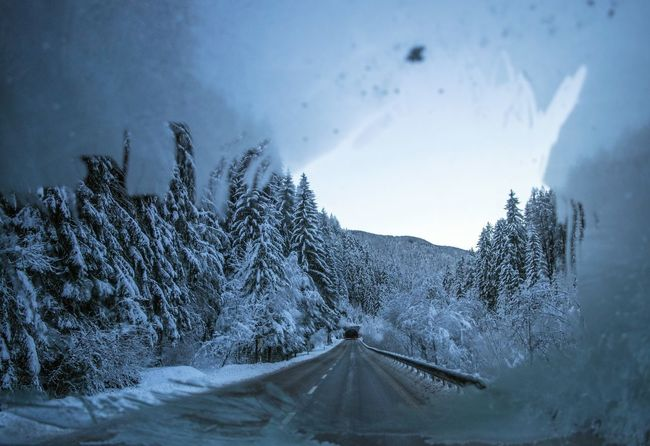 2017 363/365 Alto Adige December 29 Fir Tree Frost Frozen Nova Levante Road Südtirol Trentino Alto Adige Welschnofen Beauty In Nature Bolzano Cold Temperature Day Europe Forest Frosted Glass Italy Mountain Nature No People One Year Project Outdoors Pine Tree Scenics Sky Snow South Tyrol Street Tree Tunnel Western Europe Winter