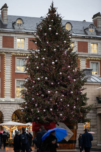 View of christmas tree in city