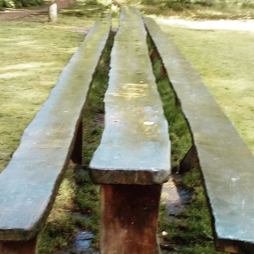 Longest picnic table